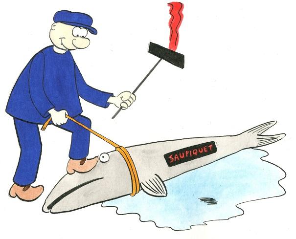 11-21-Grève des sardinières de Douarnenez (3).jpg