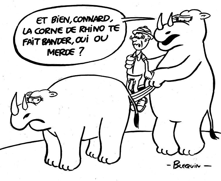 03-24-Rhinocéros (3).jpg