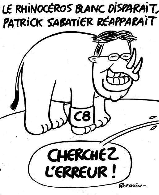 03-24-Rhinocéros-Sabatier.jpg