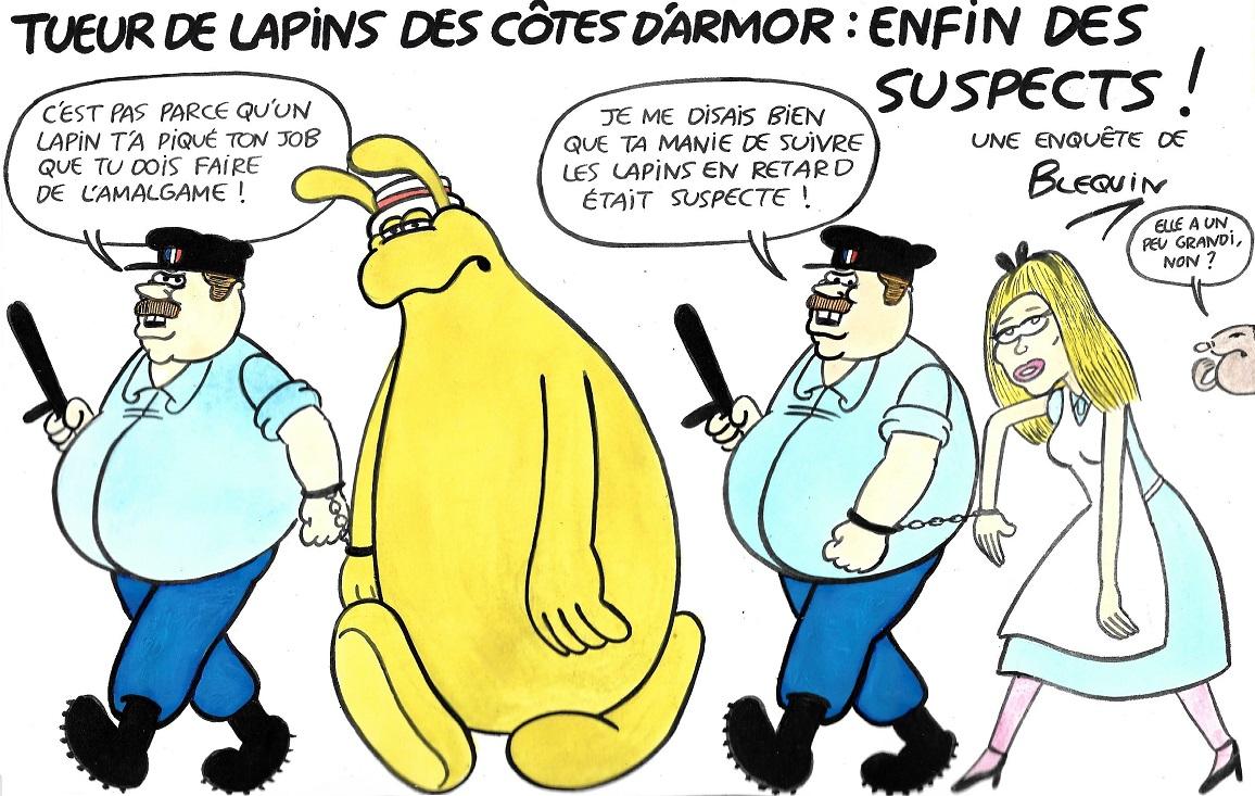 10-29-Tueur de lapins-Bretagne (1).jpg