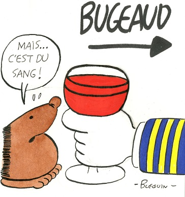 06-10-Mort de Bugeaud (1).jpg