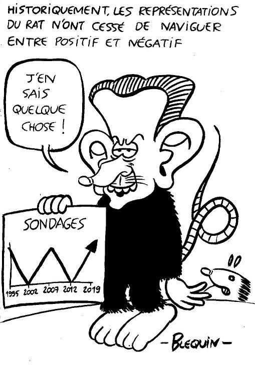 06-14-Perpignan (13) Rat-Sarkozy.jpg