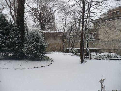 Un jardin bien calme début février