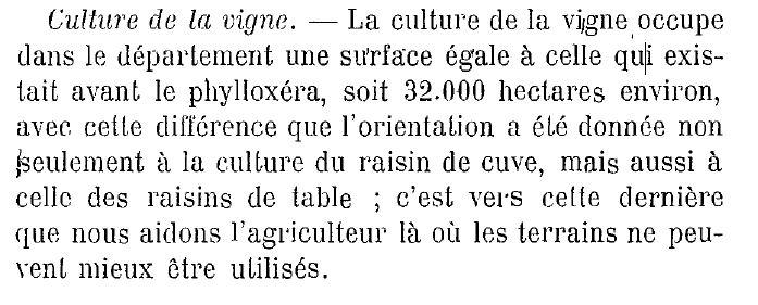 1912vigne.JPG