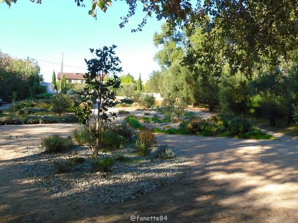 jardin des sences1.JPG