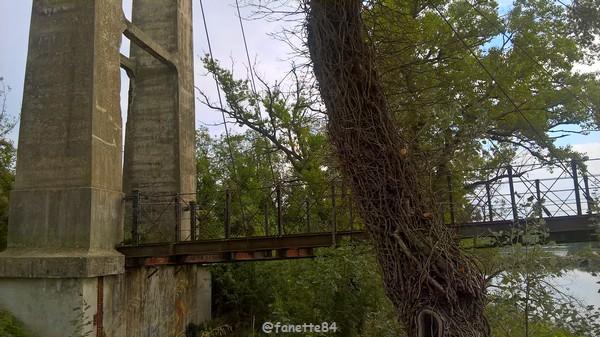 pont des arméniers 14.jpg