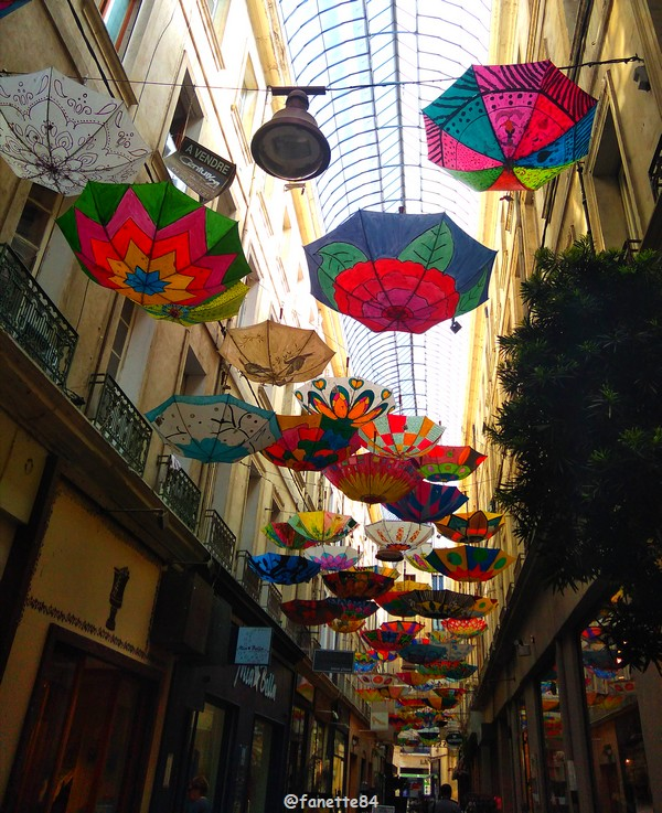 2019-6-6_carpentras_parapluies (13).jpg