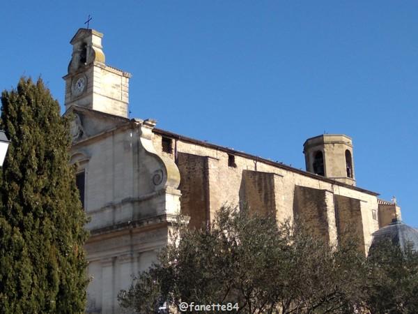 bedarrides_eglise_pigeons (8).jpg