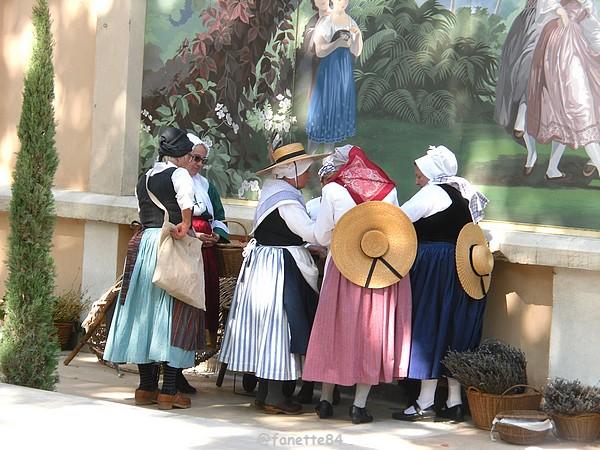 2019-8-9_pernes_6eme_fete_costume_provencal (53).JPG