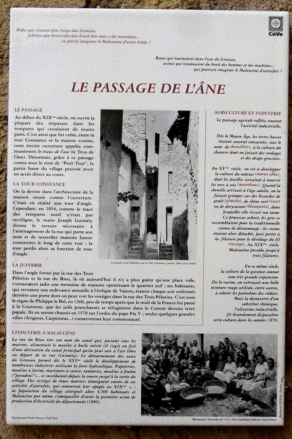 2019-20-7_malaucene_passage_ane (3).JPG