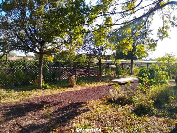 caumont_jardin_romain (63).jpg