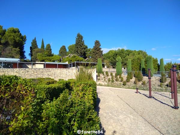 caumont_jardin_romain (68).jpg