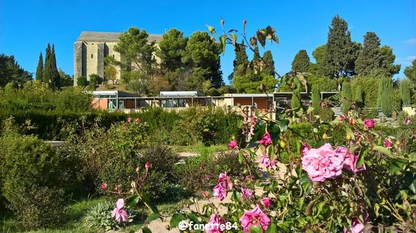 caumont_jardin_romain (72).jpg