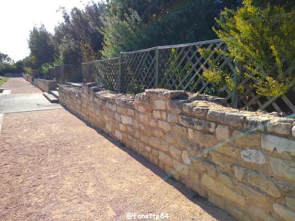 caumont_jardin_romain (101).jpg