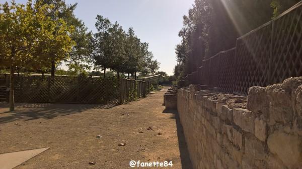 caumont_jardin_romain (111).jpg