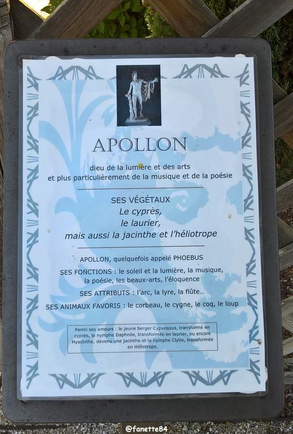 caumont_jardin_romain (66).jpg