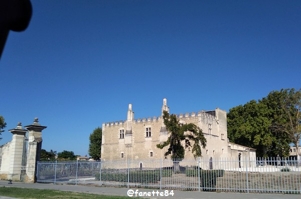 chateau fargues 4.jpg