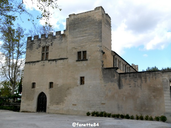 chateau_fargues 6.JPG