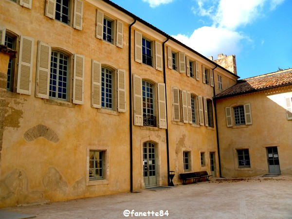 chateau_fargues 8.JPG