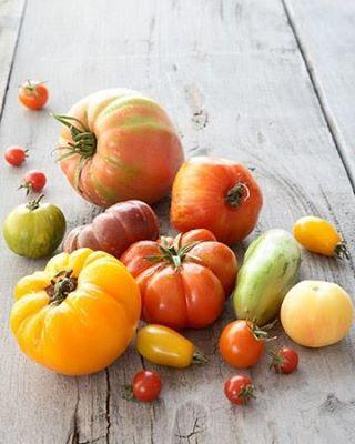 Diverses variétés de tomates.