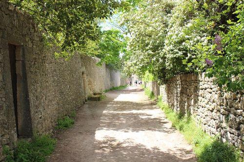 Bonnieux. Castellas. Source Luberon.fr