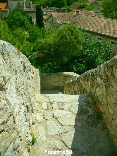 Vue du haut des escaliers de la tour de l'Horloge à Pernes les Fontaines