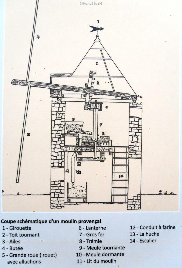 Coupe shématique d'un moulin provençal. Goult
