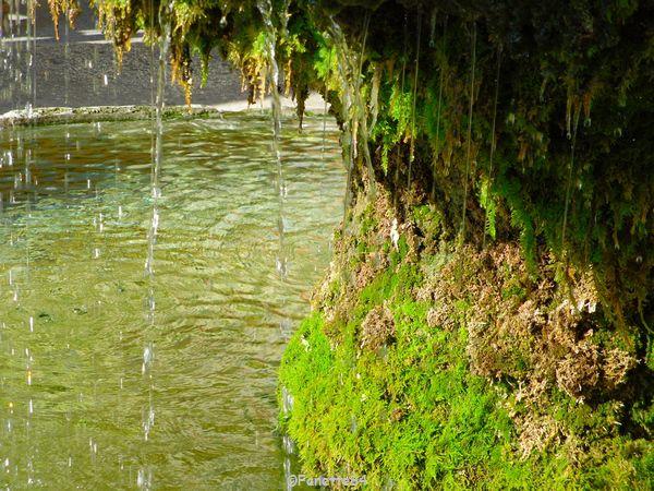 Fontaine dessous à Malaucéne