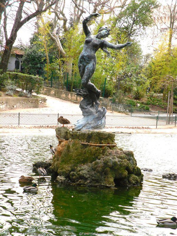 La Vénus aux hirondelles au Rocher des Doms à Avignon