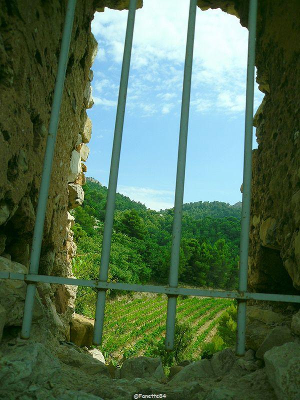 Vue des ruines du château de Gigondas