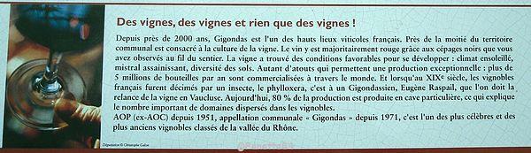 Explication des vignes de Gigondas