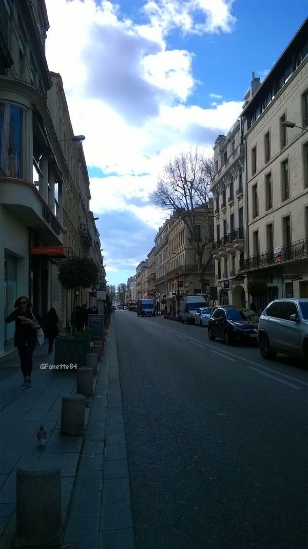 Avignon, rue de la République