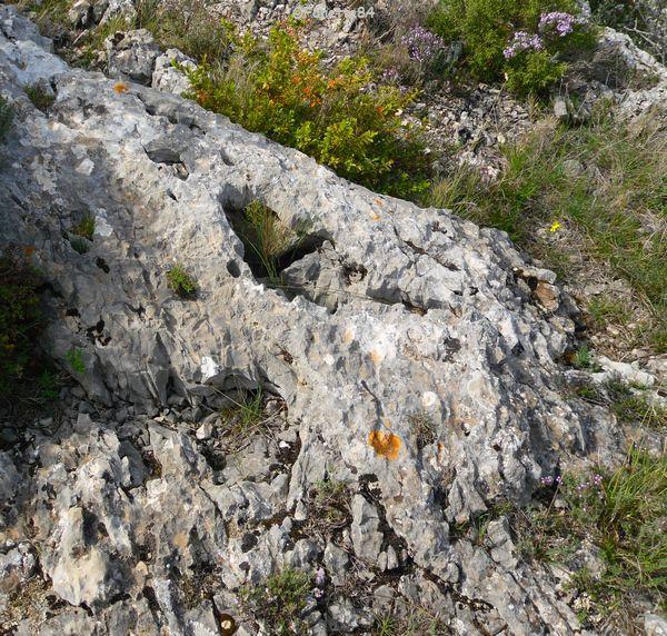 Pied de St Gens dans la pierre