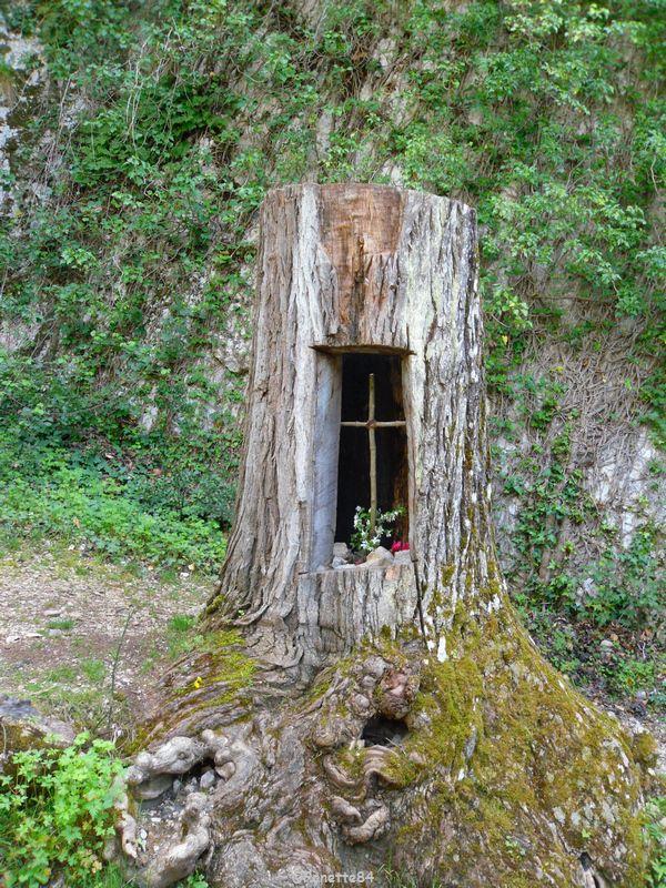 Tronc d'arbre à St Gens