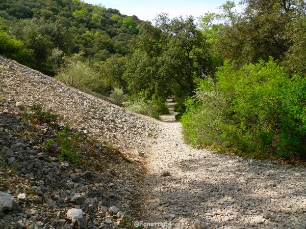 Chemin pour aller à la source miraculeuse de St Gens