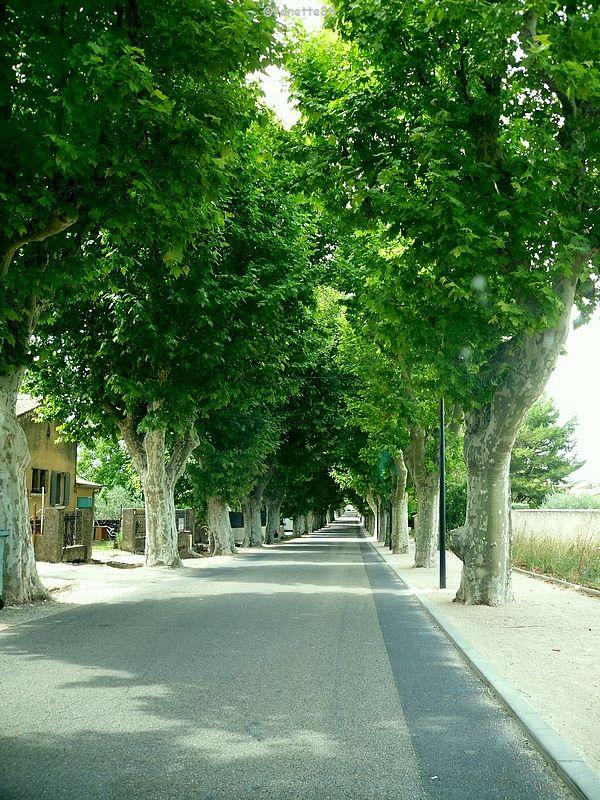 Route de Malemort Du Comtat