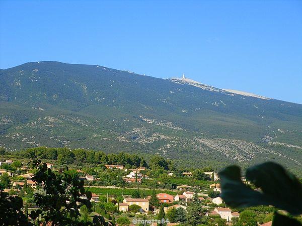 Mont-Ventoux vue de Bédoin