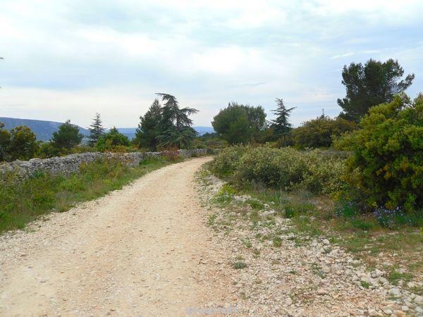 Chemin qui longe le mur de la peste à Cabrières d'Avignon