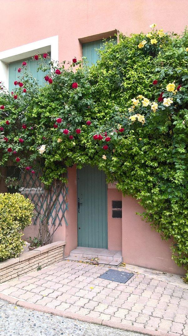 Porte fleurie d'Aubignan