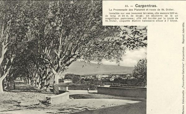 Carpentras, place des Platanes