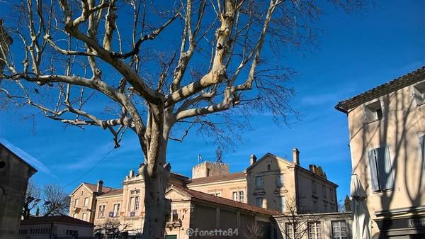 Pernes les Fontaines. Place des Augustins