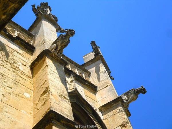 Gargouille de l'église St Michel à Caderousse