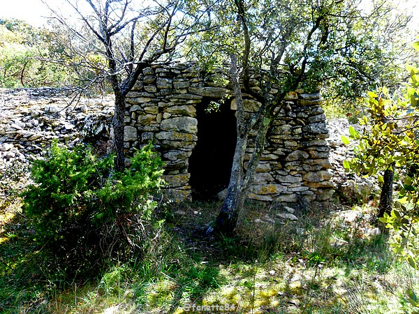 Hameau de Barbarenque