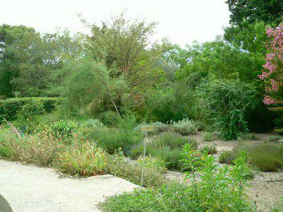 Jardin de L'Harmas de Jean-Henri Fabre prise sur le bord du bassin circulaire
