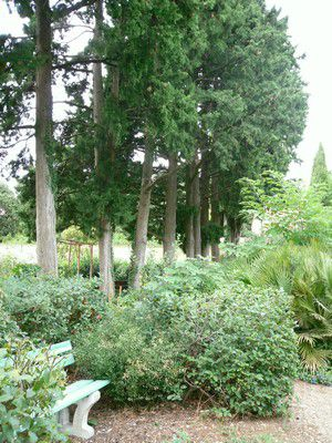 Jardin de l'Harmas de Jean-Henri Fabre