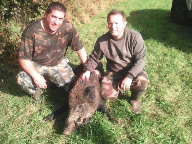 Sanglier Male 80 kg tiré a deux( Marco et Patrick )le 16/10/2016 Mériviere
