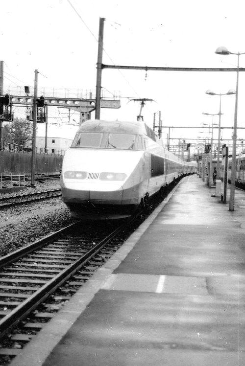 T.G.V. en gare d'Avignon centre.