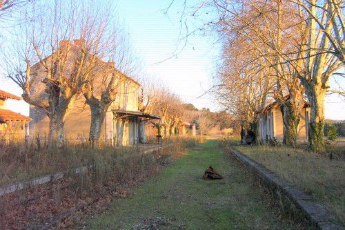 Aubignan-Loriol 12/2010