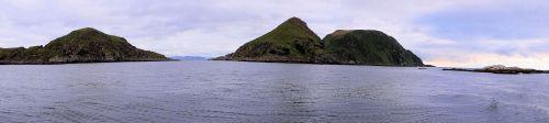 Gjesvaer : l'île aux oiseaux