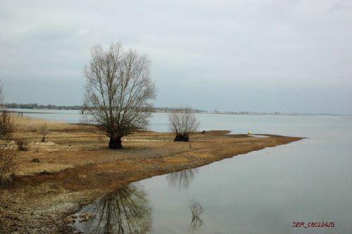 lac du Der   ambiance